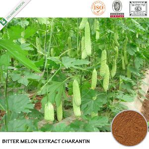 Natural Bitter Melon Extract 10% Charantin pictures & photos