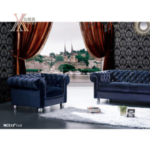 European Style Leather or Fabric Sofa Set (NCS13) pictures & photos