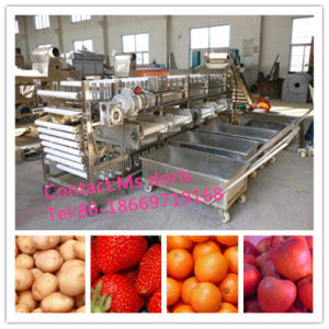 Fruit Sorting Machine/Mango Sorting Machine/Citrus Fruit Sorting Machine pictures & photos