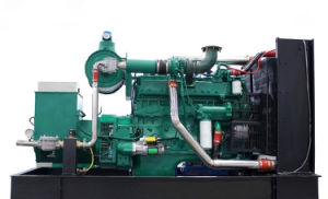 100kVA 80kw Digital Methane Powered Biogas Engine Generator pictures & photos