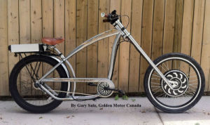 Golden Motor Magic Pie Series Ebike Conversion Part 1000W pictures & photos