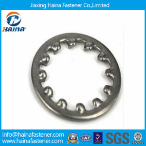 Stainless Steel DIN6797 Internal Tooth Lock Washer pictures & photos