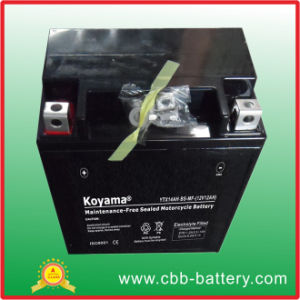 2015 Best Sales Motorcycle Battery/New Maintenane Free Motorcycle Battery Ytx14ah-BS/12V12ah pictures & photos