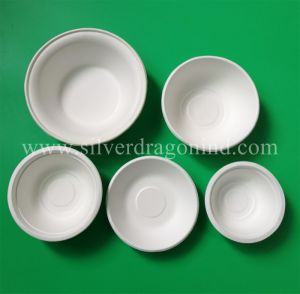 Compostable Biodegradable Disposable Sugarcane Bagasse Paper America Tray pictures & photos