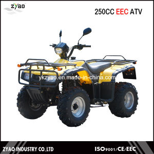 250cc Big Power EEC Farm ATV, ATV Quad with EEC Approval Hot Popular Cheap Manual Clutch Air Cooled pictures & photos