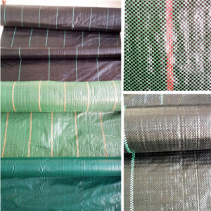 Woven Weed Control Mat/Ground Cover with 60-200G/M2 Any Color pictures & photos