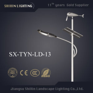8m Height Pole for 40W/50W/60W LED Lights pictures & photos