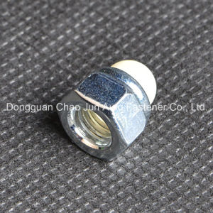 Hex Domed Cap Nuts Nylon Insert Lock pictures & photos