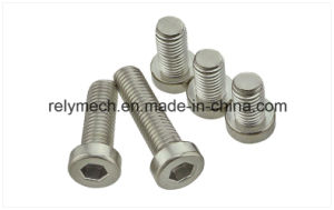 Stainless Steel/Carbon Steel Cup Head Hex Screw/Round/Pan Head Cross Screw pictures & photos
