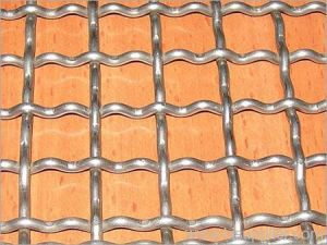 Well Galvanized Crimped Wire Mesh pictures & photos