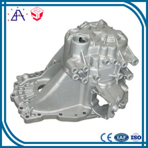 China OEM Manufacturer Pressure Die Casting (SY1289) pictures & photos