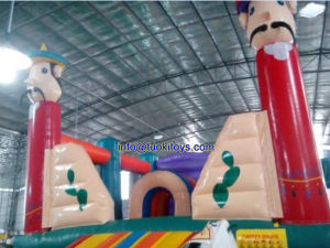 Inflatable Tiny Houses for Commercial Rental (A012) pictures & photos
