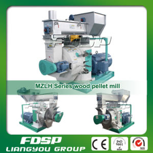 Ce Approved Biomass Wood Sawdust Pellet Mill Machine for Sale pictures & photos