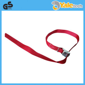 Cam Buckle Straps Endless Assembly pictures & photos