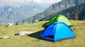 Single-Skin Campint Tent for 1-2 Perosn pictures & photos