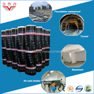 Self-Adhesive Bitumen Based Waterproof Membrane for Foundation pictures & photos