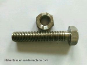 Duplex 2205 1.4462 S31083 Hex Bolt with Nut Washer pictures & photos
