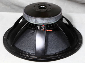 18pzb100 18inch Passive Speaker Subwoofer pictures & photos
