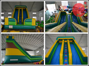 2017 New Inflatable Double Lane Wave Slide with Guardrail (T4-230) pictures & photos