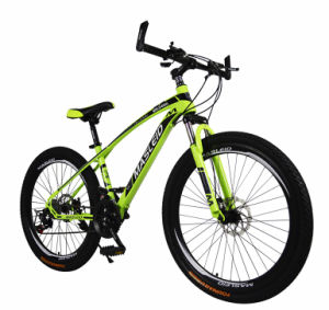 Manufacturer Directly Supply Cheap Mountain Bike (MTB-84) pictures & photos