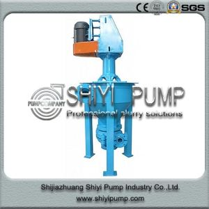 Mineral Concentrate Froth Centrifugal Pump pictures & photos