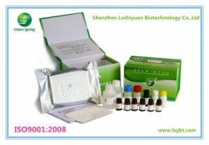 Lsy-10013 Green Spring Ractopamine Elisa Test Kit (urine, feed, meat)