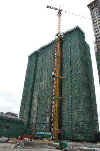 Construction Hoist Elevator Crane pictures & photos