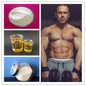 Oral Steroids Dianabol Methandrostenolone for Muscle Gain and Weight Loss pictures & photos