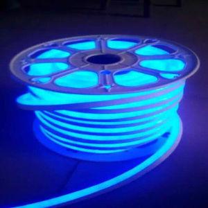 12V/24V/110V/220V Orange Flexible LED Neon Light pictures & photos