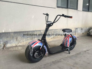 1000W Ce Approval Beach Scooter with 12 Month Quality Warranty pictures & photos