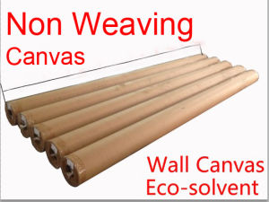Super Wide Eco Solvent Inkjet Non Weaving Wall Canvas Matt 290GSM pictures & photos