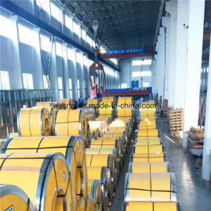 310 Stainless Steel Coil pictures & photos