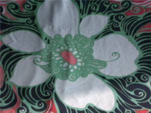 Printed Silk Jersey in Spoondrift Design pictures & photos