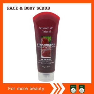 Factory Manufacturing Honey Face&Body Scrub pictures & photos