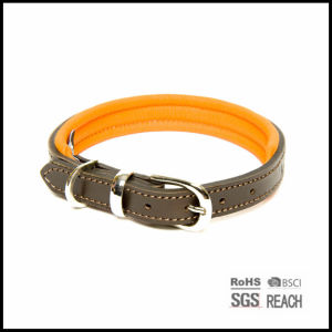 Durable Strong Leather Pet Dog Collar with EVA Padding pictures & photos
