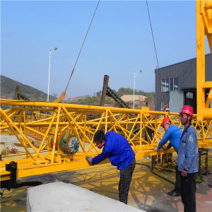 Qtk20 2ton Model Fast Erection Tower Crane with Best Quality pictures & photos