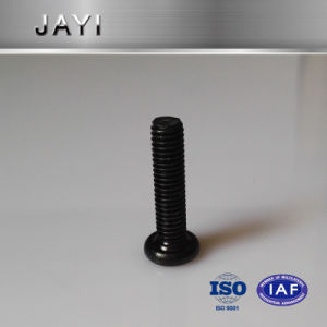 Chess Head Screw Hexagon Drives with Black Coating, Machine Screw pictures & photos