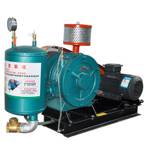 Rotary Positive Blower for Hospital and Laboratory Waste Products