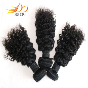 Indian Virgin Hair Jerry Curl Tangle Free Top Quality pictures & photos