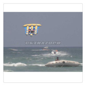 Durable PVC Tarpaulin Inflatable Aqua Flyfish Flying out of Sea pictures & photos