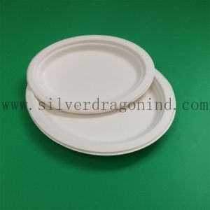 Sugarcane Pulp Disposable Paper Tray for Dinner or Party pictures & photos