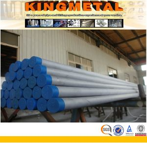 Stainless Seamless Steel Pipe 316ti/321/309/310/347/940 pictures & photos