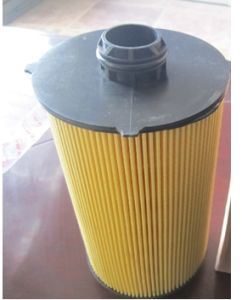 Fit Oil Filters 504179764 for Iveco Truck pictures & photos