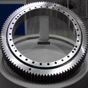 Rollix Slewing Ring Bearing Turntable Bearing External Gear 06 1595 04 pictures & photos