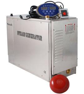 Newest Oceanic Steam Generator, 18kw Stainless Steel Commercial Steamer Generator
