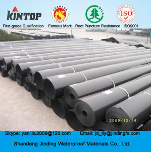 HDPE Pond Geomembrane Liner in 60 Mil Thickness pictures & photos