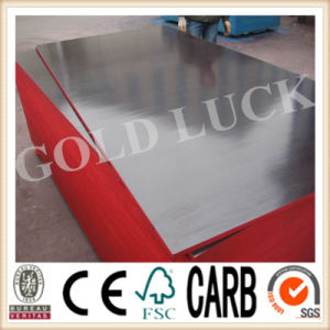 Qingdao Gold Luck Film Faced Plywood Wood Planking pictures & photos