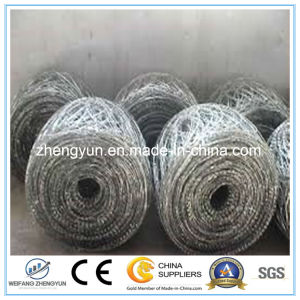 Protect Razor Blade Roll Barbed Wire pictures & photos