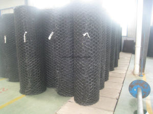 Geomat with Dipped Gavalnized Wire Mesh Reforcement for Protection Slope pictures & photos