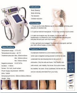 2014 Newest Cryolipolysis Body Shaping Beauty Equipment pictures & photos